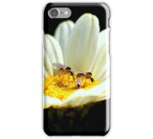 Mythicomyiidae flies iPhone Case/Skin