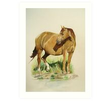 Horse by a lake Art Print