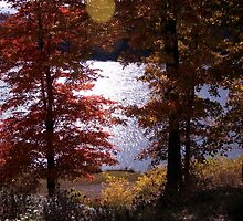 WATAUGA RIVER AUTUMN  (Larger view best) by Jael