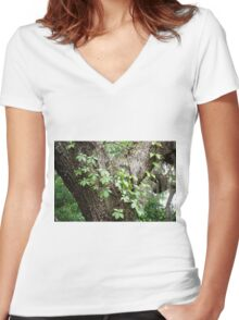 Peaceful place Women's Fitted V-Neck T-Shirt