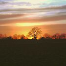 SUNSET OVER METFIELD, NORFOLK by ANNETTE HAGGER