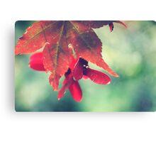 Autumn's Colours Canvas Print