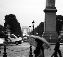 Blurred  by STEPHANIE STENGEL | STELONATURE PHOTOGRAHY