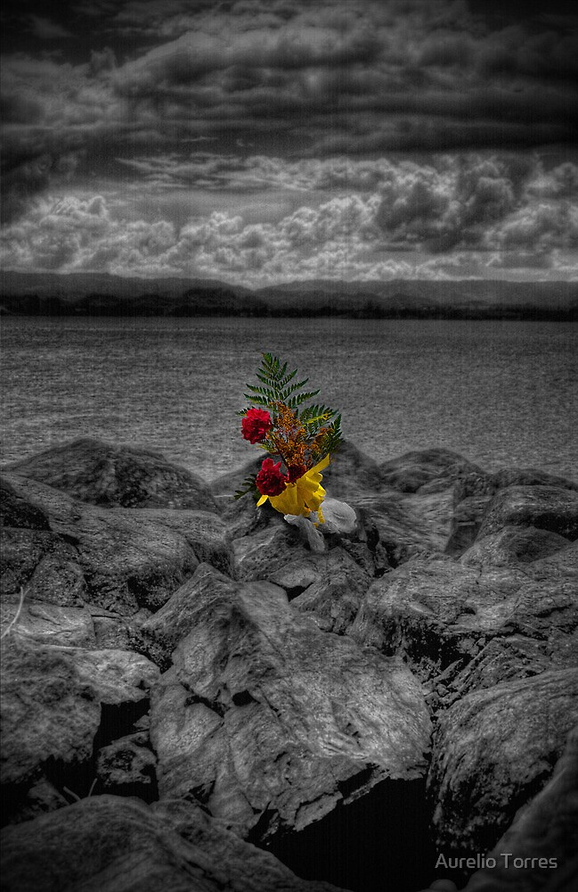 In Loving Memory... by Aurelio Torres