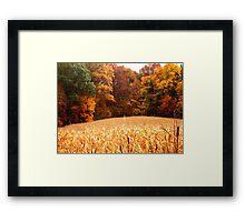 Harvest 2 Framed Print