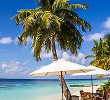 Postcard from Vilamendhoo in the Maldives by Atanas Bozhikov NASKO