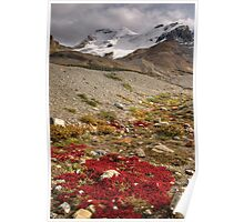 Mount Athabasca, Canada. Poster