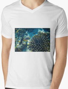 Maldivian coral reef Mens V-Neck T-Shirt