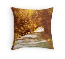 Autumn Country Lane Throw Pillow
