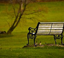 The Bench by BigD