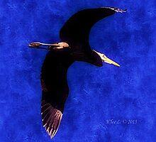 Wings of the Great Blue Heron by kDesignationz