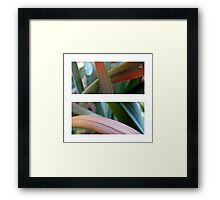 Beneath My Feet Framed Print