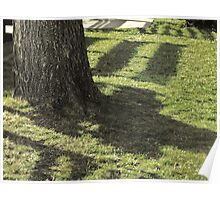 Shadow Patterns Poster