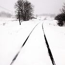 Snow Crossing by Russ Styles