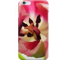 Pink Tulip Macro iPhone Case/Skin