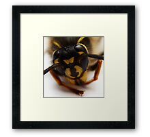 Portrait of a Wasp Framed Print