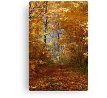 Hawthorn Hollow Woods Canvas Print