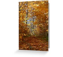 Hawthorn Hollow Woods Greeting Card