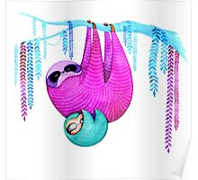 Colorful Sloths Poster
