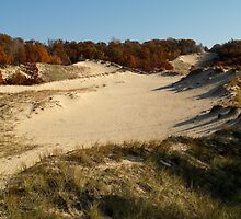 Fall Dunes (at Lake Michigan) by BarbL