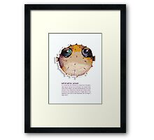 Little Profiles Adrenaline Junkie Framed Print