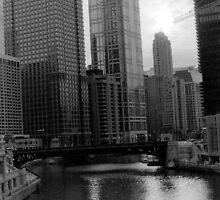 Downtown Chicago by Brian Murray