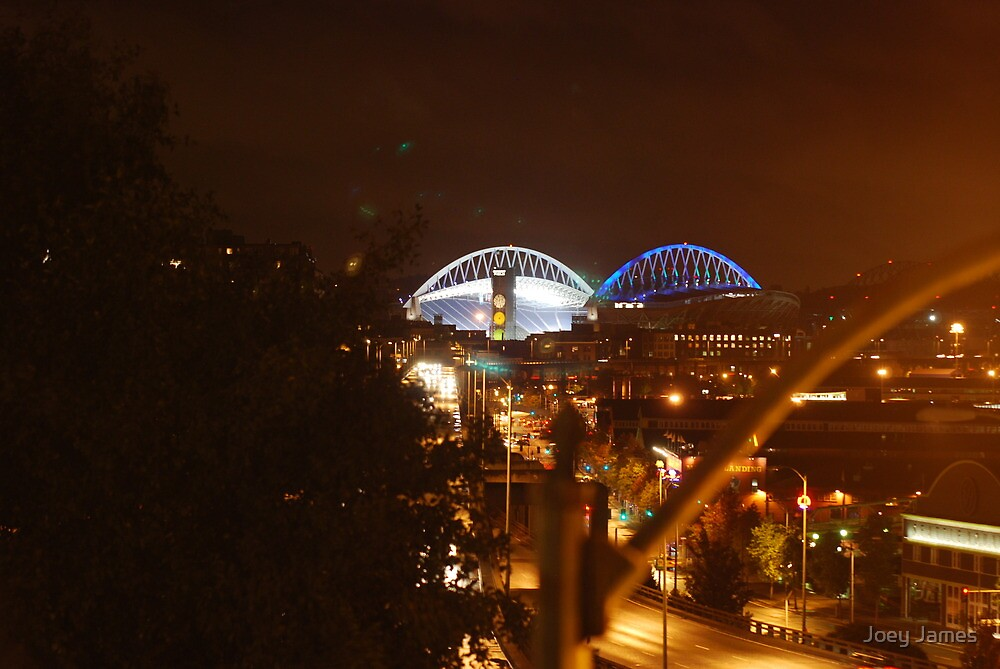 Qwest Field, Seattle, WA by Joey James