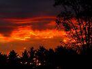 October Sunset by Veronica Schultz