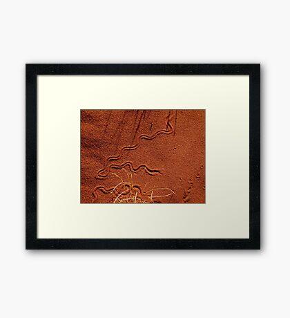 Reptile Print  Framed Print