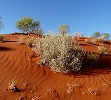 Red Sand Dune by solena432