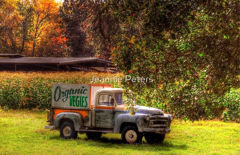 Organic Vegies by Jeannie Peters