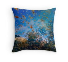 iPhone Relection Pool Throw Pillow