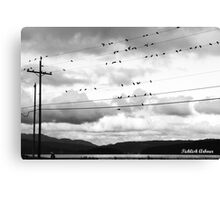 Birdies On The Wire Canvas Print