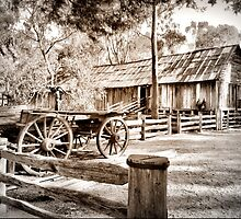 Down But Not Out in Sepia by Larry Lingard-Davis