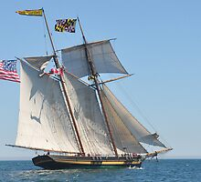 Pride of Baltimore II by mattmaples