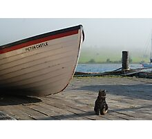 Chibley on the dock Photographic Print