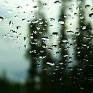A Storm Coming!!! by Vivek Bakshi