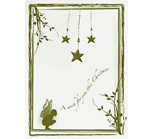A wish for you this Christmas Photographic Print