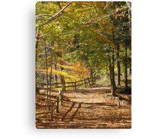Autumn Den Canvas Print