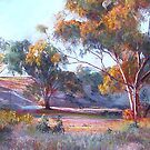 The Colours of Evening by Lynda Robinson