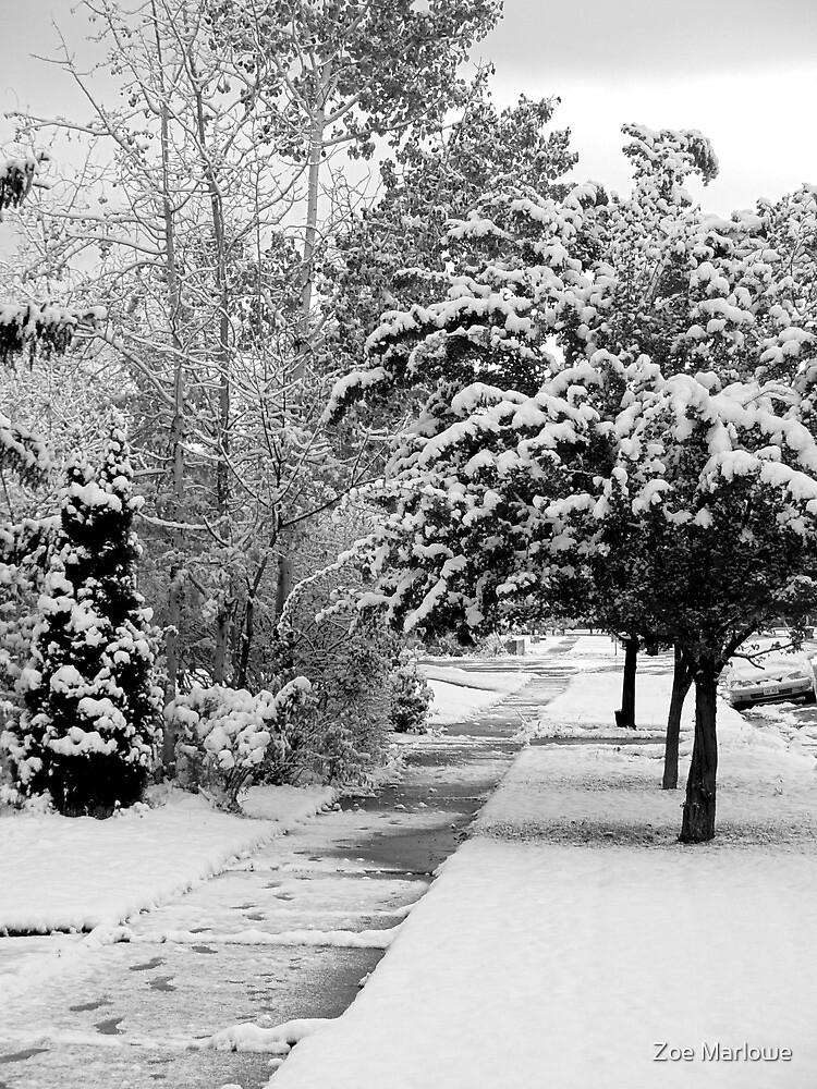 First Snow Of The Season by digitalmidge