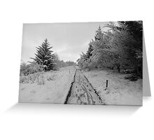The road to Narnia Greeting Card