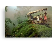 Colombian Road Stand Metal Print