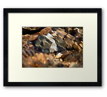 TUMALO FALLS FLOWING WATER OVER ROCKS Framed Print
