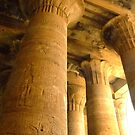 Temple columns, Egypt by Fineli