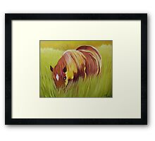 Horse eating in  tall grass. Framed Print