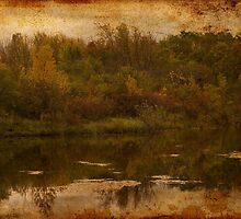 Autumn at the Pond by janetlee