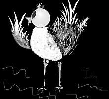 little bird by tulay cakir