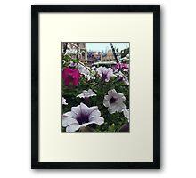 Main Street Blooms Framed Print