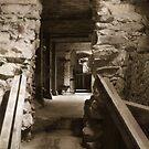 the bank vault by gabryshak